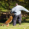 K-9s & Officers Showing Off At Wags & Waddles Duck Hunt