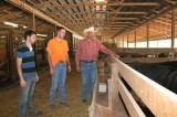 University of Tennessee hosts junior bull test sale in March