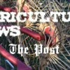Weekly Livestock Comments, May 3, 2013