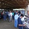 UT AgResearch to host Tobacco, Beef and More Field Day