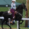 40th Annual Chestnut Hill Charity Horse Show