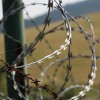 Tensions Rise As Razor Wire Comes Down At Mountain View