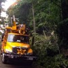 AEC Line Crews Help With Hurricane Irma Restoration