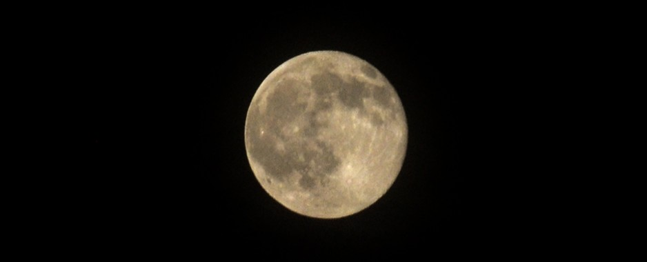 Once in a Harvest Moon