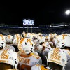 Tennessee Edged by Kentucky, 29-26