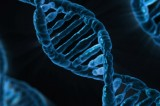 Genes and family are biggest predictor of academic success, study suggests