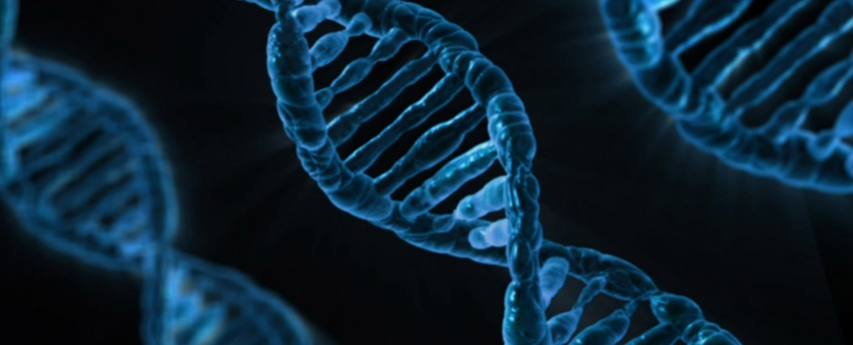 Set of genetic markers in lung cancer identified