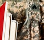 Tennessee Higher Education Launches Veteran Education Initiative: New Portal Will Convert Military Training to Civilian Credit