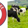 Support Local Dairies, Look for New Tennessee Milk Logo