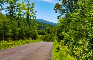 Slagle Realty – Lot 119 Huff Overlook Way, Del Rio, TN