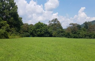 Slagle Realty – Lot 14 Wind Ridge Dr., Rogersville, TN