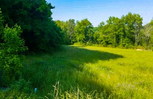 Slagle Realty – Lot 57 River Rapids Way, Del Rio, TN 37727