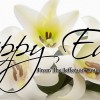 Happy Easter from the Jefferson County Post