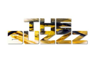 the buzzz large featured