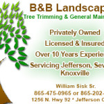 B&B Landscaping Ad