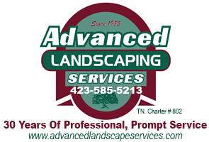 Advanced Landscaping Ad 2