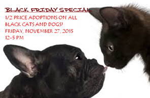 Black Friday Adoption Black Pets