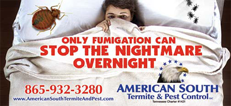 American South Bed Bugs Ad 03032016