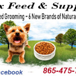 Fox Feed Expanded Grooming 05282018