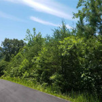 Lot 119 Huff Overlook Way